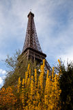 Eiffel tower, Paris in spring Royalty Free Stock Image