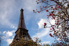 Eiffel tower, Paris in spring Stock Photo