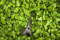 Eiffel tower on a piece of grass. Spring is coming, all things recovery, downstairs found a small piece of grass, it was covered with dew. I put a model of the stock photos