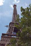 The Eiffel tower with pigeon Royalty Free Stock Photos