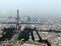 Eiffel tower. The poison frog has merged with the environment Royalty Free Stock Photo