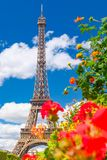The Eiffel Tower and  flowers on a beautiful sumer day in Paris. The Eiffel Tower and red flowers on a beautiful sumer day in Paris Royalty Free Stock Photos