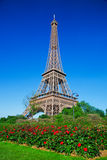 Eiffel Tower, red roses in Paris, France Stock Images