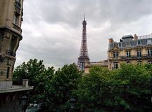 Eiffel tower. The eiffel tower rising behind buildings and trees Royalty Free Stock Photo
