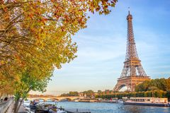 Eiffel tower and the river Seine, yellow automnal trees, Paris France. Eiffel tower and the river Seine, yellow automnal trees, Paris, France Royalty Free Stock Photos