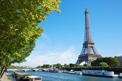 Eiffel tower and river view with green tree branches in Paris Royalty Free Stock Photo