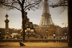 Eiffel Tower seen from Tuileries garden in Paris, France Stock Photography