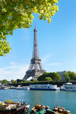 Eiffel tower and Seine river view with green tree branches Royalty Free Stock Photos