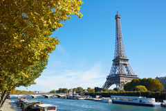 Eiffel tower and Seine river view with yellow tree branches Stock Photos