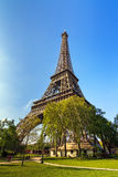 Eiffel tower in spring Stock Images
