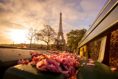 Eiffel Tower with spring leaves in Paris, France Stock Photos