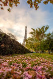 Eiffel Tower with spring leaves in Paris, France Royalty Free Stock Photography