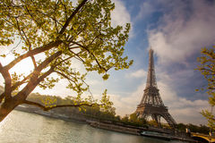 Eiffel Tower with spring leaves in Paris, France Stock Image
