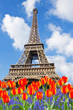 Eiffel Tower at spring, Paris Royalty Free Stock Photo
