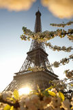 Eiffel Tower in spring, Paris, France Stock Photo