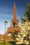 Eiffel Tower in spring, Paris, France Royalty Free Stock Photography
