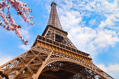 Eiffel Tower at spring Stock Photos