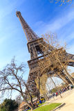 Eiffel tower in spring Stock Photos