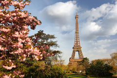 Eiffel Tower in spring time, Paris Stock Photography