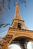 Eiffel Tower in spring time, Paris, France Royalty Free Stock Photo