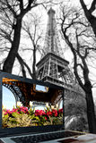 Eiffel Tower in spring time, Paris, France Royalty Free Stock Image