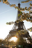 Eiffel Tower in spring time, Paris, France Royalty Free Stock Photography