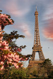 Eiffel Tower in spring time, Paris, France Stock Photos