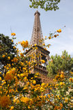 Eiffel Tower in spring time, Paris, France Stock Photography