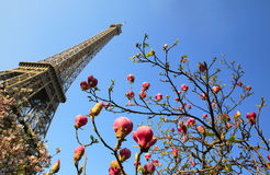 Eiffel Tower in spring time Stock Image