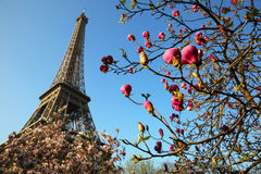 Eiffel Tower in spring time Stock Photography