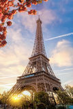 Eiffel Tower during spring time in Paris, France Royalty Free Stock Images