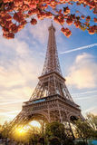 Eiffel Tower during spring time in Paris, France Royalty Free Stock Photography