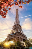Eiffel Tower during spring time in Paris, France Royalty Free Stock Photos