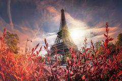 Eiffel Tower during spring time in Paris, France. Famous Eiffel Tower during spring time in Paris, France Stock Photography