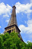Eiffel Tower in summer over trees Royalty Free Stock Image