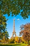 Eiffel tower surrounded by trees Royalty Free Stock Images