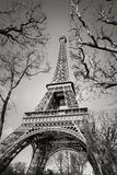 Eiffel Tower and Trees of Champs de Mars, Paris, France Stock Photos