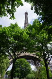 The Eiffel Tower with trees. The Eiffel Tower partly hidden by trees Royalty Free Stock Photo