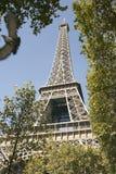 Eiffel Tower Through Trees Stock Photos
