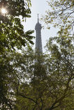 Eiffel Tower Through Trees Royalty Free Stock Image