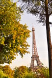 Eiffel Tower. From trocadero park Royalty Free Stock Photography