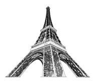 Eiffel tower vector illustration Royalty Free Stock Photography