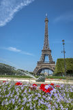 Eiffel Tower view from Champ de Mars Stock Image