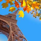 The Eiffel tower, yellow autumn leaves Stock Photos