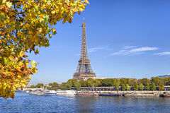 Eiffel Tower with a yellow tree on the front, Paris Royalty Free Stock Photos