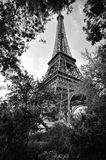eiffel trädgårds- tornsikt arkivfoton
