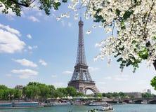 Eiffel turnerar över Seine River Royaltyfri Fotografi