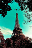 Eiffelen står hög Royaltyfria Bilder