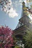 Eiffeltorn Arkivbilder