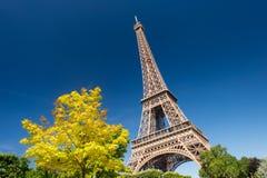 Eiffeltorn från Champ de Mars arbeta i trädgården i sommar Arkivfoton